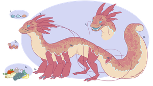 Axolotl Dragon Species Guide: Anatomy by StoryShepherd