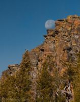 Moon Sight by MartinGollery