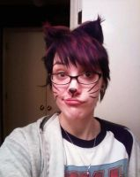 I'mma kitty by LaurenWiles