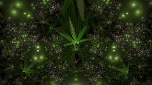 Weedy by cmcougar