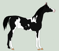 possible yearling 2 by horsecrazy2010