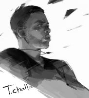 T.challa by Hallpen