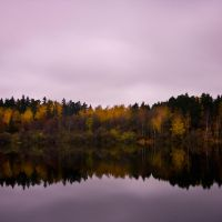 Autumn III by CalleHoglund