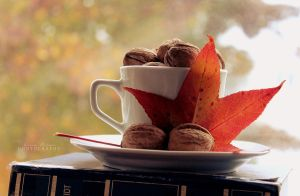 A Cup Of Autumn. by MadSubstance