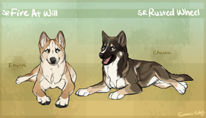 SR Seppala Sleddogs - Empire and Chaska by Sumac-Ridge