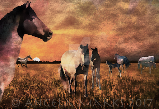 Nicholas and His Herd by amequinedesign