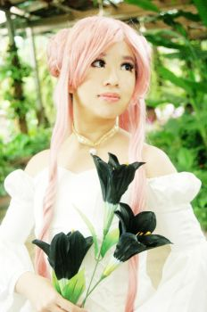 Pink Princess by melatiputih