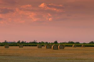 Round bales int the sunset by sztewe