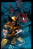 WOLVERINE AND THE AMAZING SPIDER-MAN by K-Bol