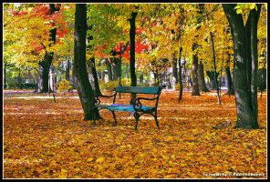 lonely bench... by Iulian-dA-gallery