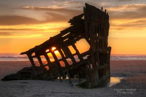 Peter's Sunstar by LeashaHooker