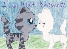 Jayfeather and Half moon by Dawnfire2025