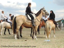 Hungarian Festival Stock 069 by CinderGhostStock