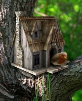 Birdhouse by funkmaster-c