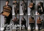 Briefcase - Pack 1 by Cobweb-stock