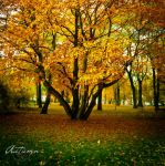 Autumn by Jules1983