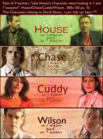 Pack of 4 House banners by maybe55