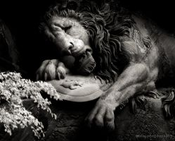 The Dying Lion of Luzern (Infrared) by Amoakk