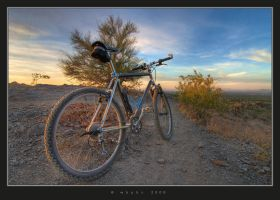Mountain Biking by HogRider