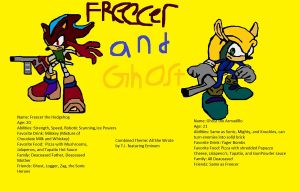 Freecer the Hedgehog and Ghost the Armadillo by BladetheEchidna1