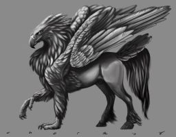 Hippogryph Greyscale by CharReed