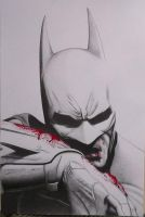 Batman: Arkham City by andrewUA