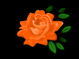 Orange Rose for an Orange Rose by Larcivus