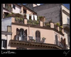 Local Roma by 2Stupid2Duck