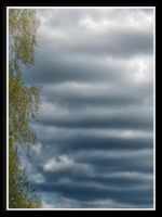 ...cloudy day... by Yancis