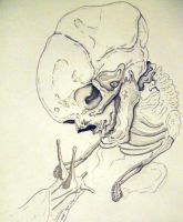 dead baby and slug love by bladderpains