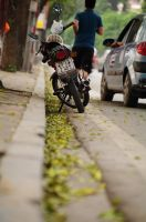 Autumn corner in Hanoi. by Chimom198