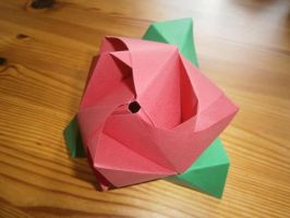 Rose Cube by MarjoleinB