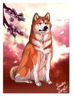 Hachiko by TheMysticWolf