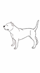 American Staffordshire Terrier Lineart 2 Free by AnimeLuvr12