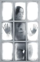 trailer darling under glass by scottchurch