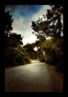 The Horse Road by mutos