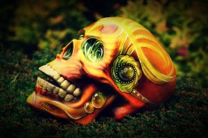 Unique airbrushed skull by ToshTown! by CandyCherep