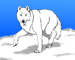 Icy Green Stare ::Wolf Fursona:: by EmpressOfDestruction