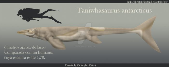 Taniwhasaurus antarcticus by Christopher252