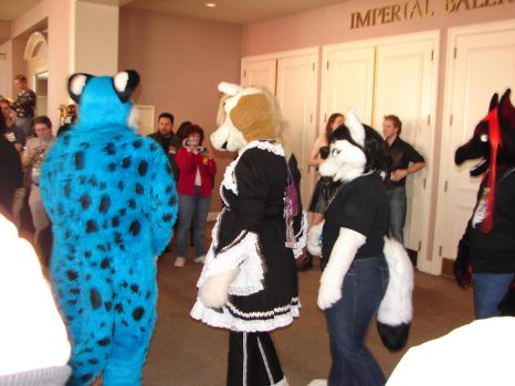 some fursuiters by hawaiianstile