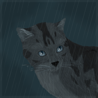 Rainpelt by Teufel-fox