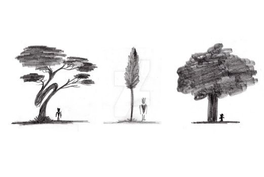The traveler : trees by perd-son-temps