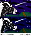 Wish upon a Shooting Star by Wulfsista