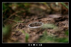the ring by VietMan