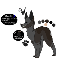 Zenith Ref by Hsria