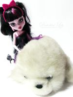 Vampire and baby seal  (1) by diabolikal-lily