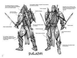 Paladin character design by hairywookiee