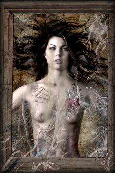 Anatomy Of The Soul by SlientSweetSerenity