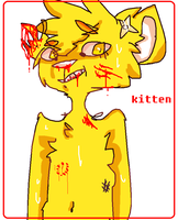 Kitten by The-Highway-To-Hell