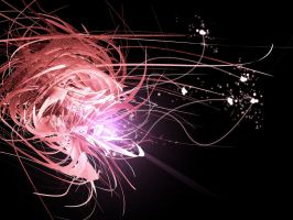 Spark of Whirlwind by Shyann